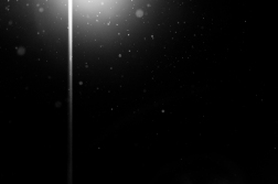 Gentle snowfall under street light